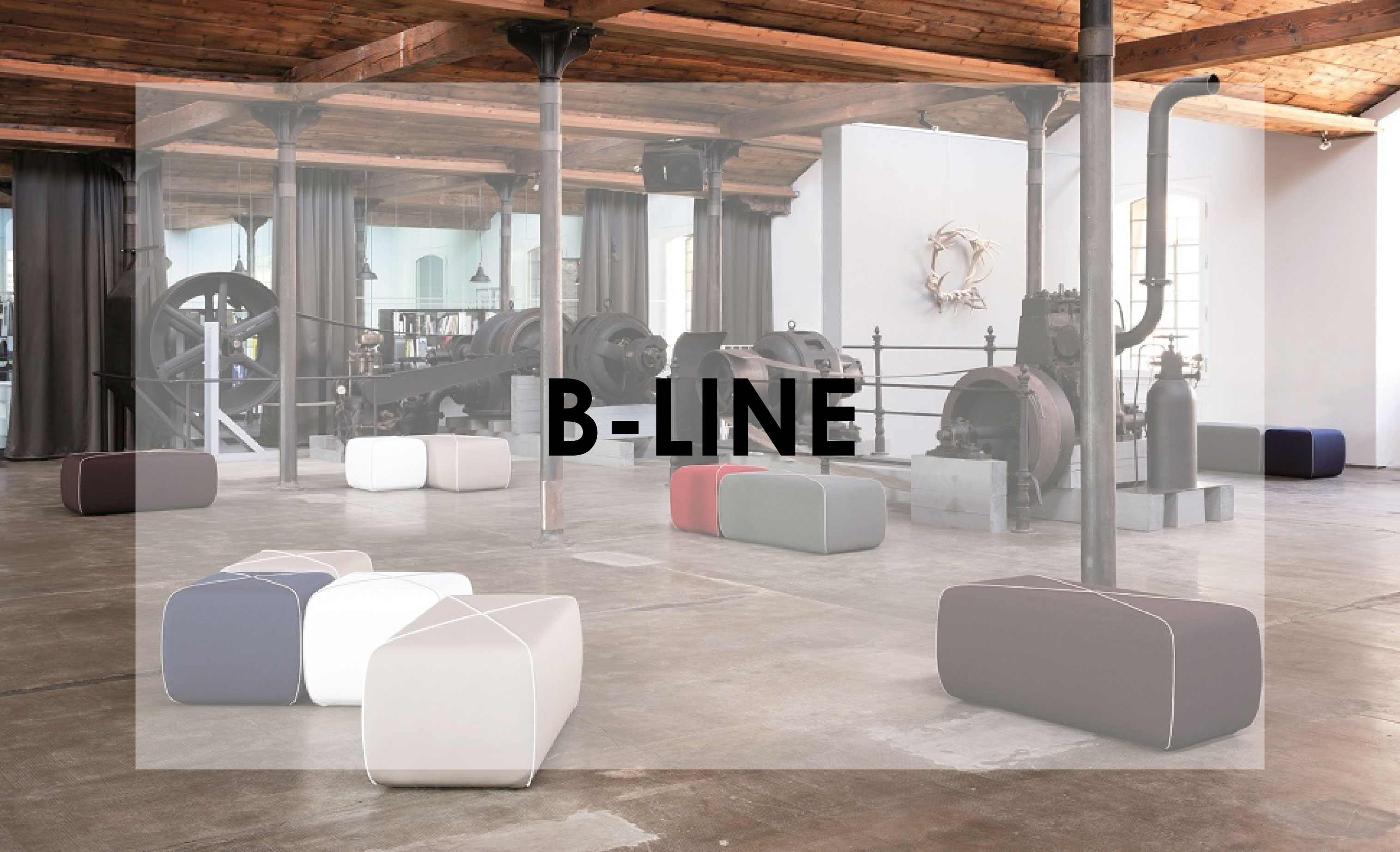 B-line.jpg